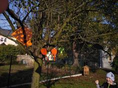 Podzim a zamykání stromů